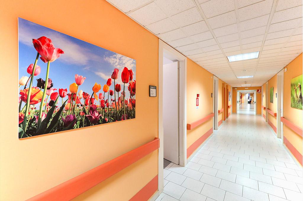 residenza san francesco img01 - Orpea Italia